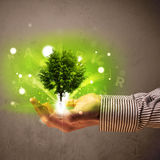 Glowing tree growing in the hand of a businessman Royalty Free Stock Photo