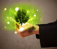Glowing tree growing in the hand of a businessman Stock Photos