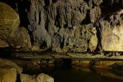 Glowworm cave close to Waitomo, New Zealand royalty free stock images