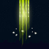 Glowworms flying around the lamp Royalty Free Stock Images