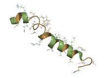 Free Glucagon-like Peptide 2 (GLP-2) Peptide Molecule. Royalty Free Stock Photo - 35580175