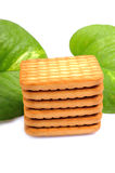 Glucose Biscuits Royalty Free Stock Photo