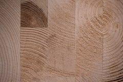 Glued hardwood tree texture background Stock Photos
