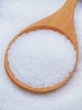 Glutammato monosodico (MSG) un alimento dell'asiatico del rinforzatore di sapore hight immagine stock libera da diritti
