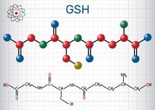 Glutathione GSH molecule, is an important antioxidant in plant. S, animals and some bacteria. Structural chemical formula and molecule model. Sheet of paper in a stock illustration