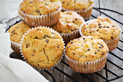 Free Gluten Free Almond And Oat Muffins Royalty Free Stock Photo - 42393385