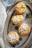 Gluten free almond and oat muffins Royalty Free Stock Photos