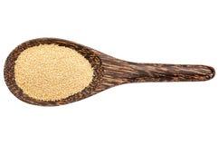 Gluten free amaranth grain Stock Image