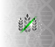 Gluten free background. Gluten free abstract scientific DNA background Royalty Free Stock Image