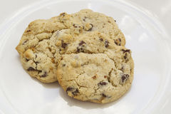 Gluten free chocolate chip cookies Royalty Free Stock Photography