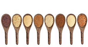 Gluten free grain collection Stock Image