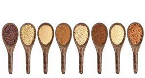 Gluten free grain collection Stock Image