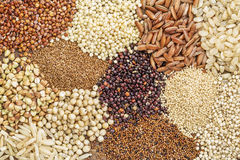 Gluten free grains abstract Royalty Free Stock Images