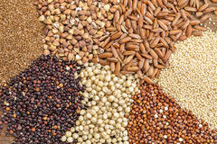 Gluten free grains  abstract. A variety of gluten free grains (buckwheat, amaranth, brown rice, millet, sorghum, teff,  red quinoa) i- top view Royalty Free Stock Photos