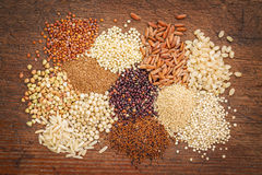 Gluten free grains abstrtact Stock Images