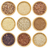 Gluten free grains. Buckwheat, amaranth, brown rice, millet, sorghum, teff, black, red and white quinoa - isolated wooden bowls Royalty Free Stock Image