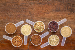 Gluten free grains - measuring scoops on wood. Gluten free grains (quinoa, brown rice, kaniwa, amaranth, sorghum, millet, buckwheat, teff) - a set of measuring Royalty Free Stock Photos