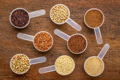 Gluten free grains - measuring scoops on wood. Gluten free grains (quinoa, brown rice, kaniwa, amaranth, sorghum, millet, buckwheat, teff) - a set of measuring Stock Photos