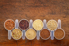 Gluten free grains - scoops on rustic wood. Gluten free grains (quinoa, brown rice, kaniwa, amaranth, sorghum, millet, buckwheat, teff) - a row of measuring Royalty Free Stock Image