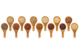 Gluten free grains and seeds  abstract Royalty Free Stock Photography