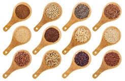 Gluten free grains and seeds abstract. A variety of gluten free grains and seeds (buckwheat, amaranth, brown rice, millet, sorghum, teff, black, white and black Royalty Free Stock Image