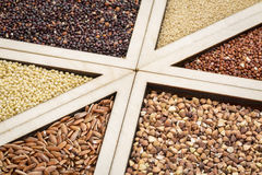 Gluten free grains Royalty Free Stock Photo