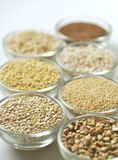 Gluten-free grains on white background Royalty Free Stock Images