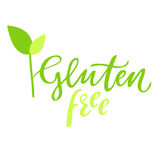 Gluten free hand drawn logo, label, with leaf and sprout. Vector illustration eps 10 for food and drink, restaurants Royalty Free Stock Images