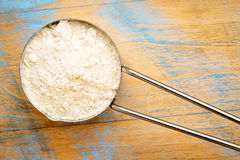 Gluten free  quinoa flour Royalty Free Stock Image