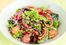 Gluten-free quinoa salad Royalty Free Stock Images