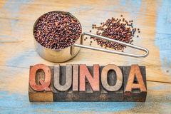 Gluten free quinoa grain Royalty Free Stock Photo