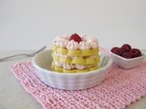 Gluten free raspberry torte Royalty Free Stock Image
