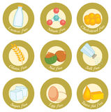 Gluten free. Set of retro style icons concerning nutrition: lactose free, nitrate free, cholesterol free, gluten free, nut free, salt free, sugar free, egg free Royalty Free Stock Photography
