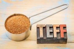 Gluten free teff grain Stock Image