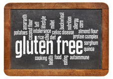 Gluten free word cloud Royalty Free Stock Images