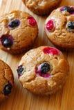 Gluten frigör muffiner Royaltyfri Bild