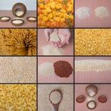 Gluten frigör quinoaen fotografering för bildbyråer