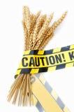 Gluten geben Diät frei Lizenzfreies Stockbild