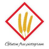 Gluten geben Piktogramm frei Stockfotografie