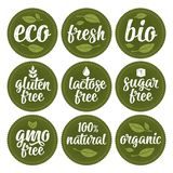 Gluten, lactose, sugar, Gmo free, bio, eco, fresh calligraphic handwriting lettering with leaf, cube, drop. Vector white vintage. Illustration on green circle stock illustration