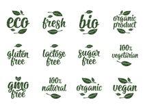 Gluten, laktoza, cukier, Gmo uwalnia, życiorys, eco, świeży kaligraficzny handwriting literowanie z liściem, sześcian, kropla Wek ilustracja wektor