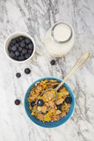 Glutenfree granola and blueberries Royalty Free Stock Photography