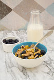 Glutenfree granola and blueberries Royalty Free Stock Photo