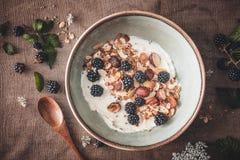 Glutenu Bezpłatny Granola z Kokosowym jogurtem i czernicy dla śniadania obrazy stock