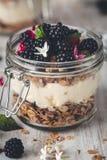 Glutenu Bezpłatny Granola z Kokosowym jogurtem i czernicy w słoju dla śniadania zdjęcia royalty free