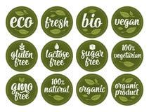 Glutine, lattosio, zucchero, Gmo libero, bio-, eco, fresco, vegano, iscrizione calligrafica vegetariana con la foglia, cubo, gocc royalty illustrazione gratis