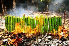Glutinous рис зажаренный в духовке в бамбуковых соединениях Стоковое Изображение