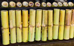 Glutinous rice roasted in bamboo joints Stock Photo
