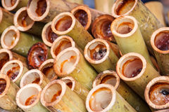 Glutinous rice roasted in bamboo joints Stock Photos