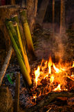 Glutinous rice roasted in bamboo joints Stock Images